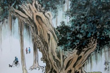 O Banyan Tree
